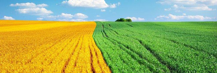 agroenergetyka jak zacząć
