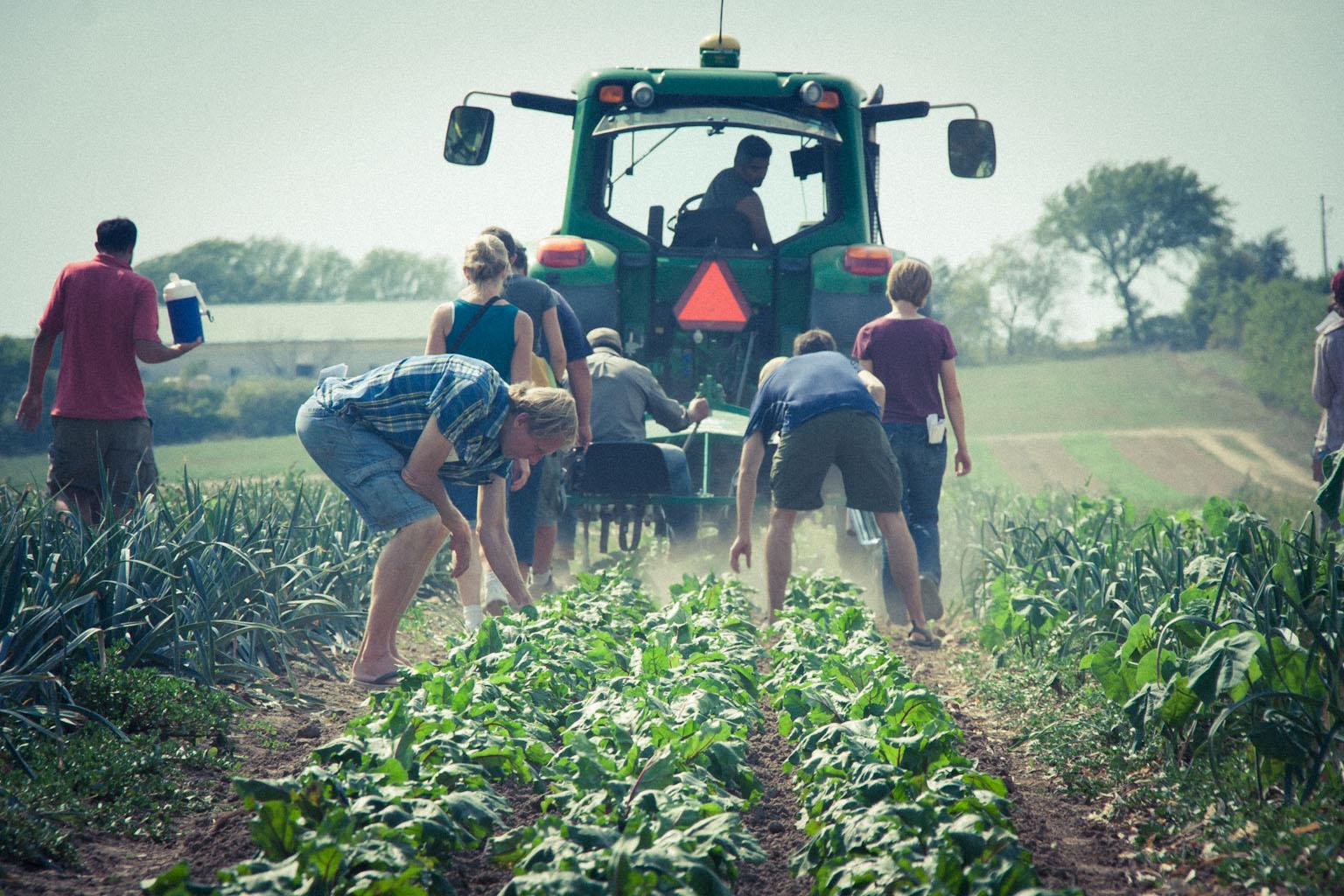 preferencyjne-wsparcie-finasowe-dla-rolnikow